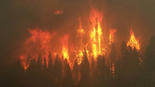 Woodland or Forest Fires - credit USFS Region 5